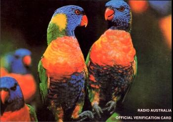 RadioAustralia-2_表_.jpg